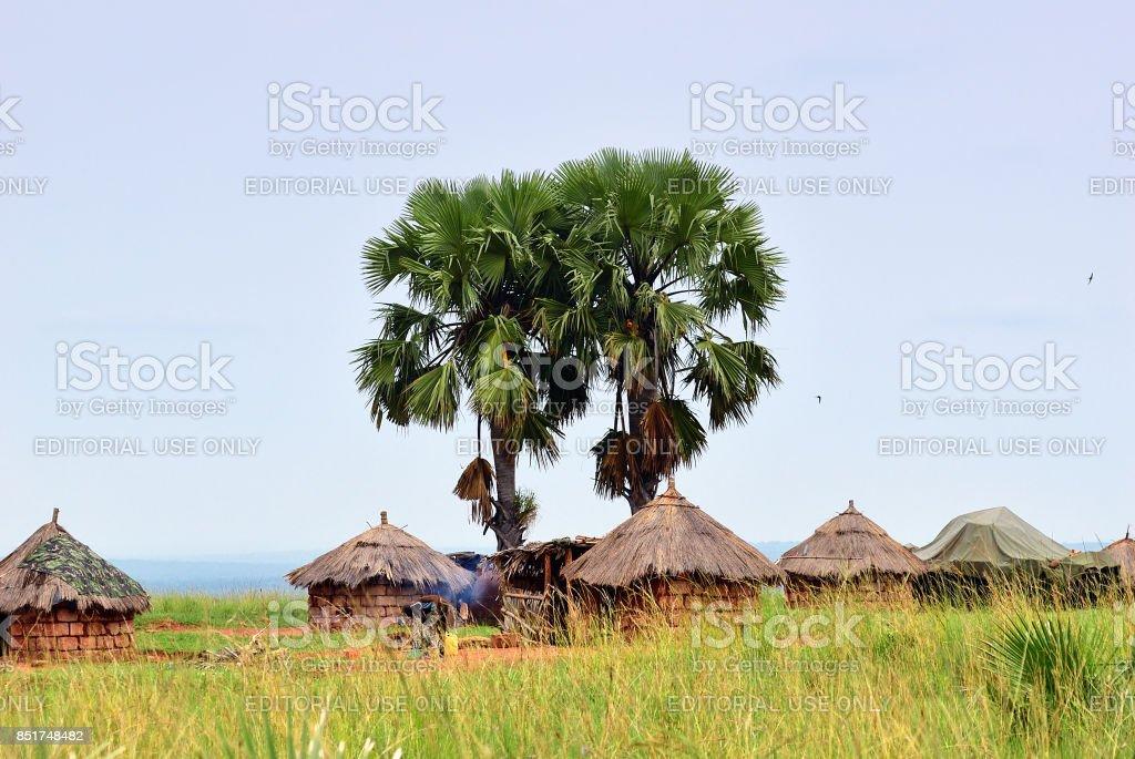 Huts in the village in Uganda, Africa stock photo