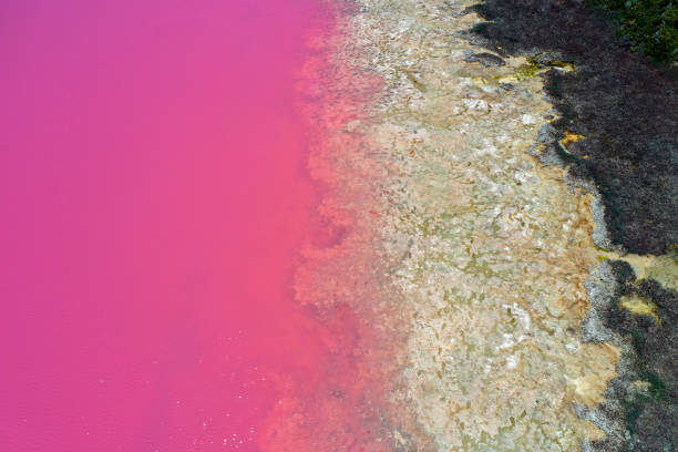 Hutt Lagoon Pink lake at Port Gregory in Western Australia stock photo