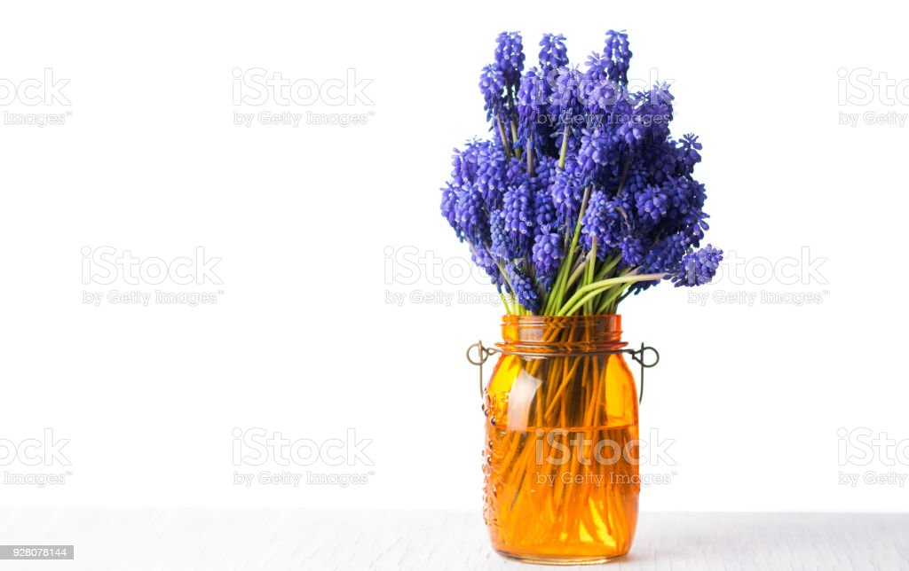 Hyacinth Flower Bouquet In A Vase Stock Photo & More Pictures of ...