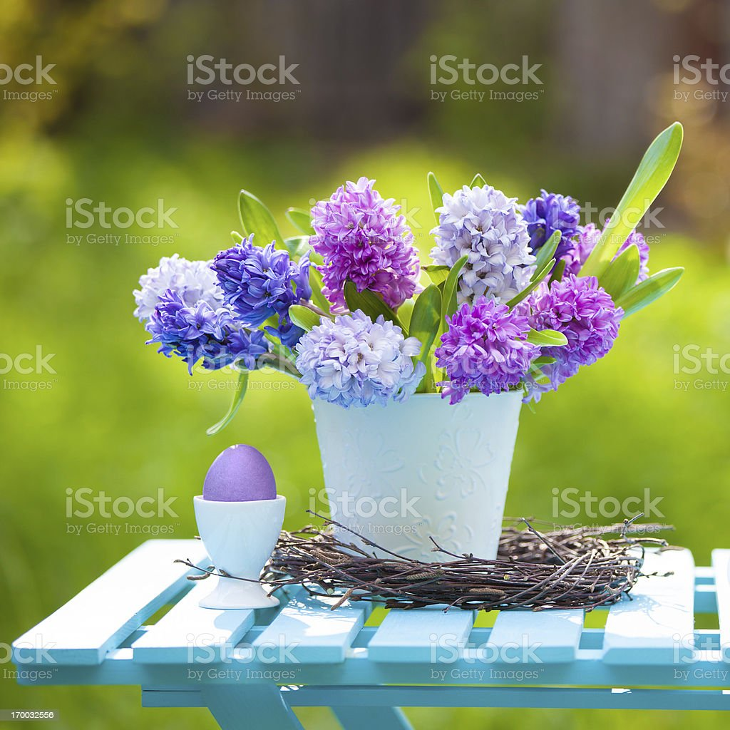 Hyacinths and easter egg, spring composition royalty-free stock photo