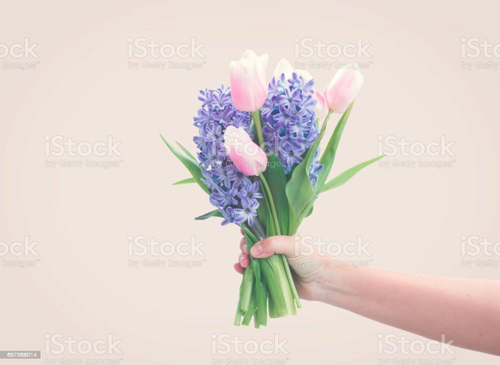 hyacinths and tulips stock photo