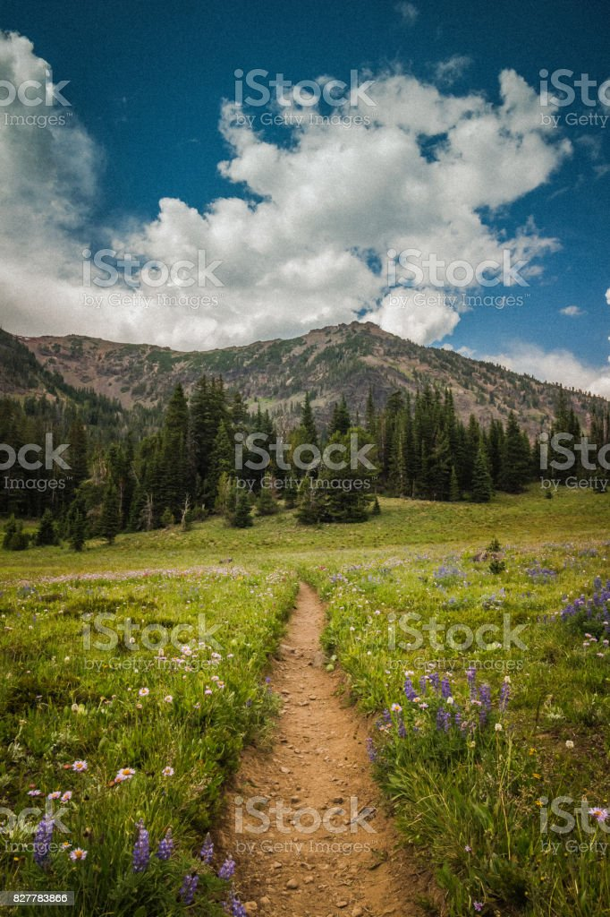 Hyalite Canyon Trail stock photo