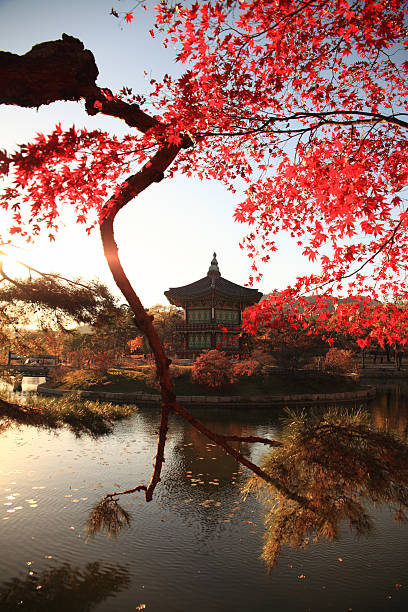 Hyangwonjeong pavilion in autumn stock photo