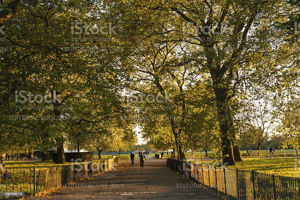 Hyde park London royalty-free stock photo