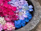 アジサイの花びらが水に浮かんでいます。和風石ベースのフラワーアレンジメント。