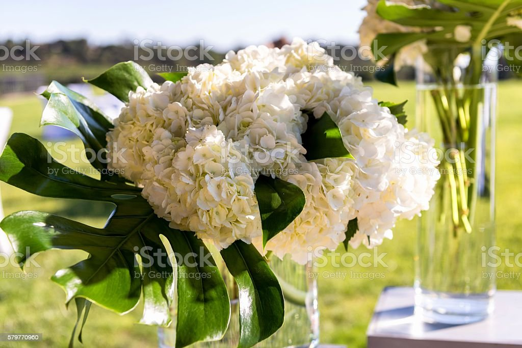 Hydrangea flowers arranged on table stock photo