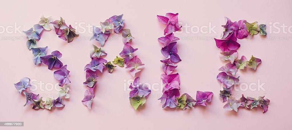 Hydrangea Spring flowers in Sale word arrangement stock photo