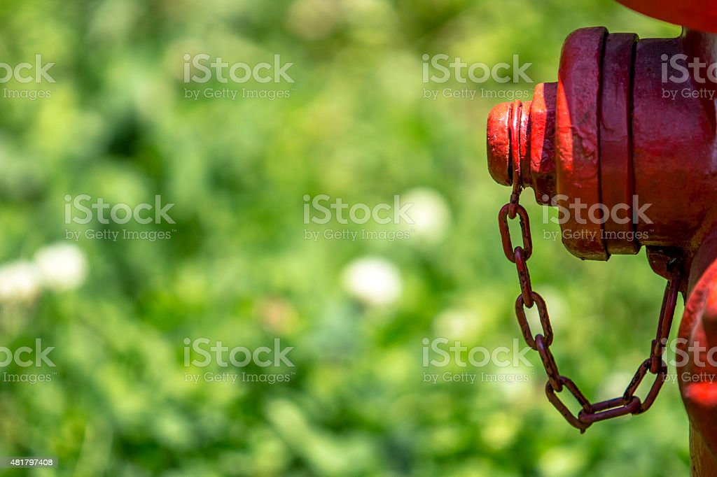 hydrant on grass stock photo