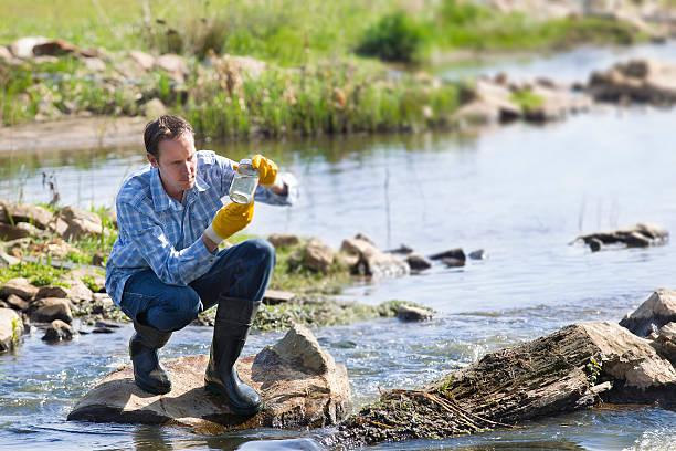 hydro biolog badania jakości wody - organizm wodny zdjęcia i obrazy z banku zdjęć