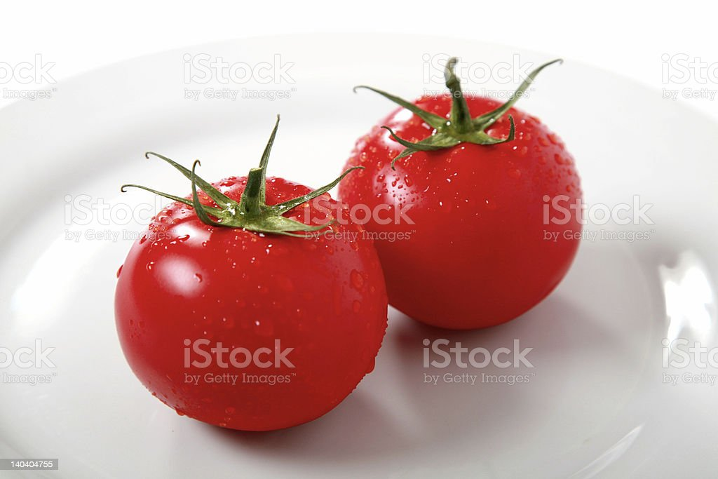 Hydroponic tomatoes royalty-free stock photo