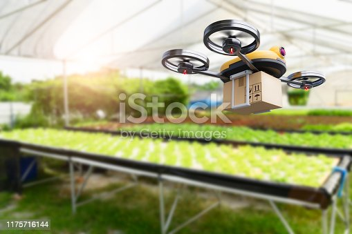 istock Hydroponics vegetables farming drone at indoors modern farm background. Service for delivery shipping healthy organic product and goods to customer. Business and farming innovative technology gadget 1175716144