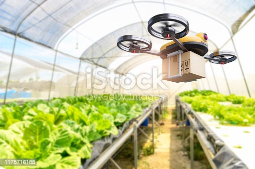 istock Hydroponics vegetables farming drone at indoors modern farm background. Service for delivery shipping healthy organic product and goods to customer. Business and farming innovative technology gadget 1175716188