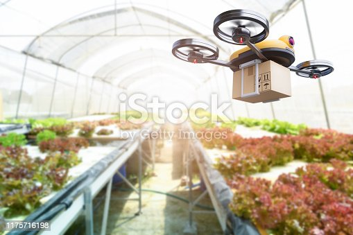 istock Hydroponics vegetables farming drone at indoors modern farm background. Service for delivery shipping healthy organic product and goods to customer. Business and farming innovative technology gadget 1175716198