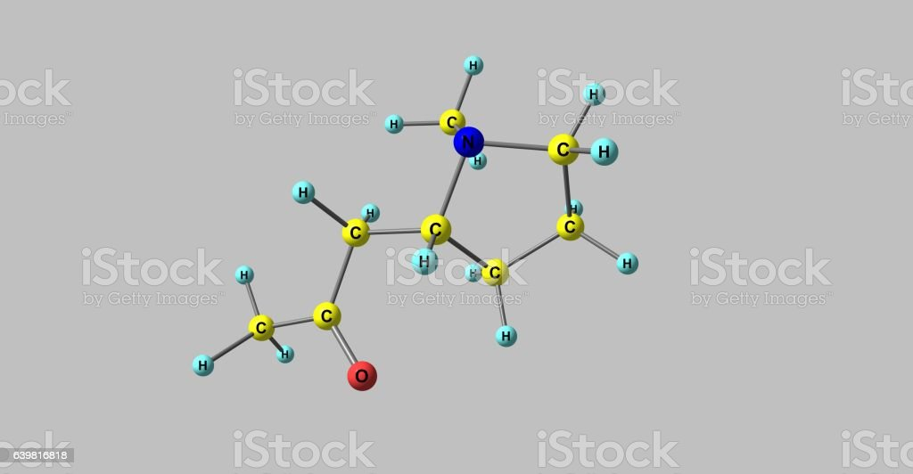 Hygrine molecular structure isolated on grey stock photo