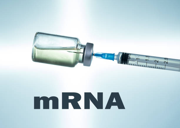 Hypodermic syringe needle inserted into a vaccine ampoule as mRNA concept stock photo