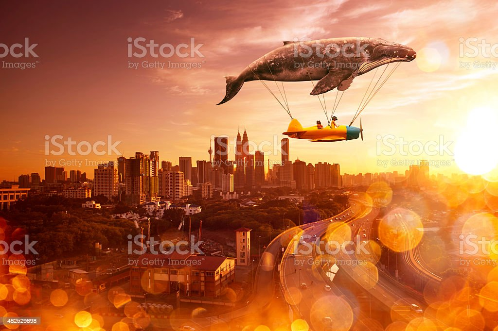 i belive i can fly stock photo