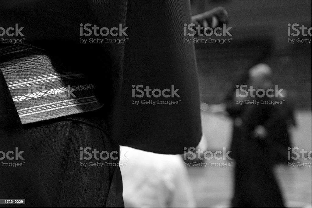 Iaido seminary #7 royalty-free stock photo
