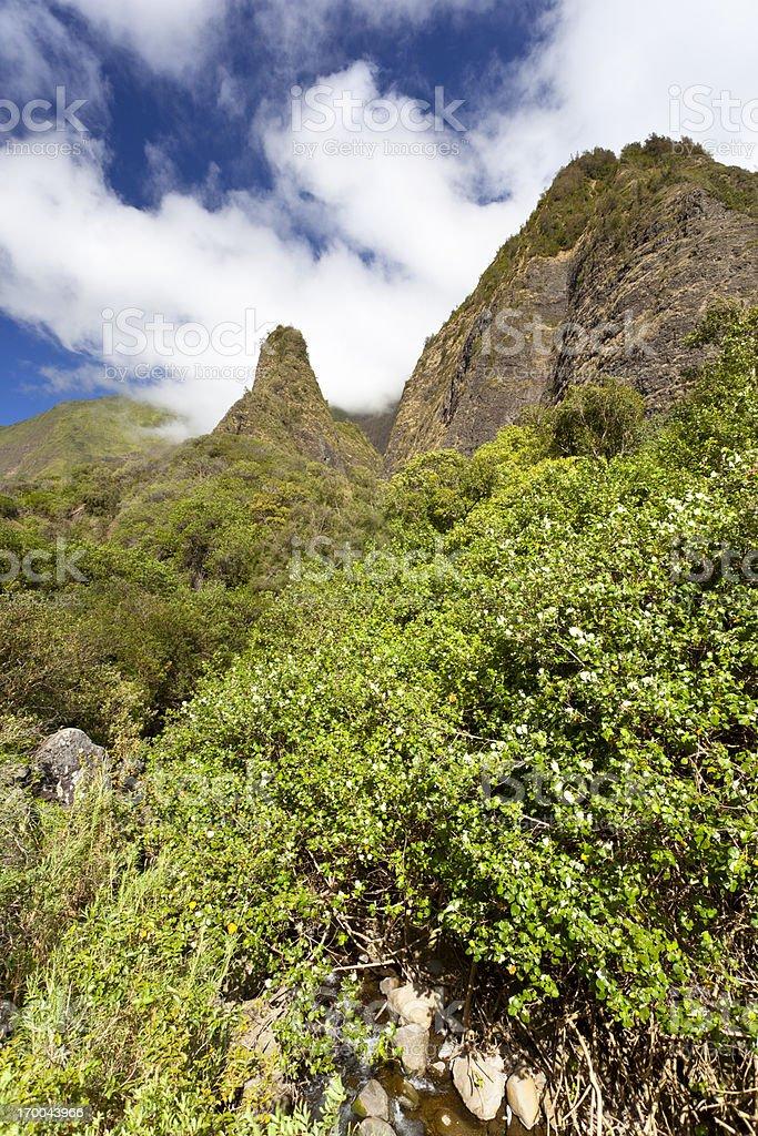 Iao Needle, Maui royalty-free stock photo