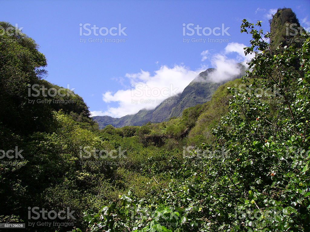 Iao Valley stock photo