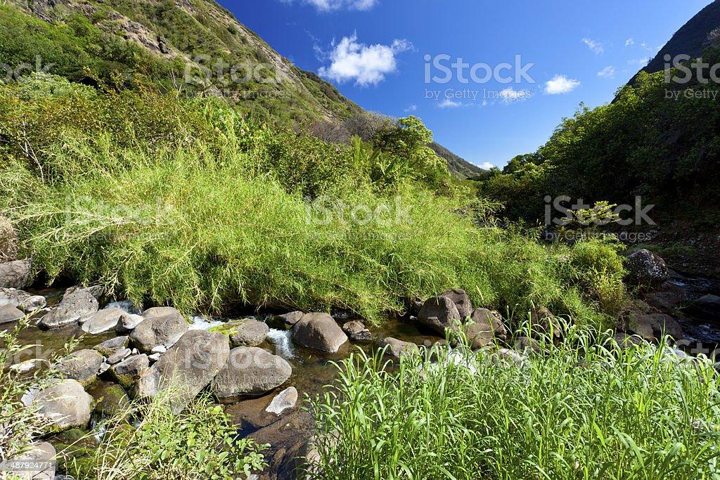 Iao Valley River, Maui stock photo