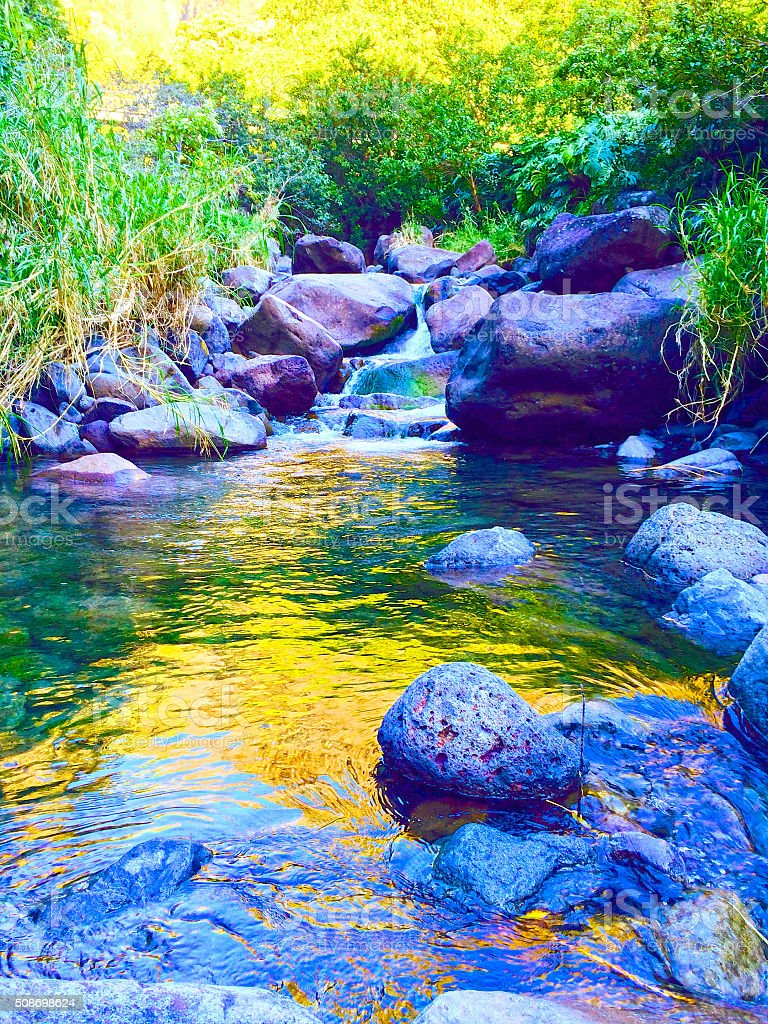 Iao Valley Stream stock photo