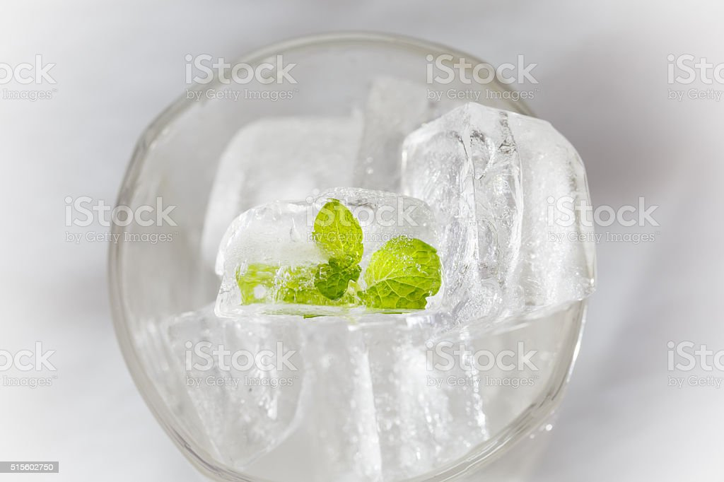Ice and mint stock photo