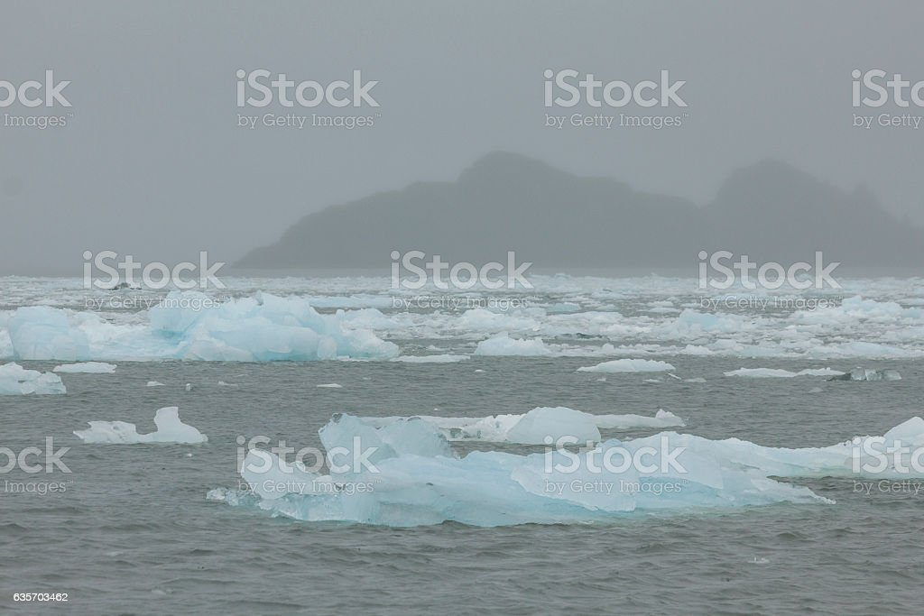 Ice bergs from Aialik Glacier and Slate Island in fog. royalty-free stock photo