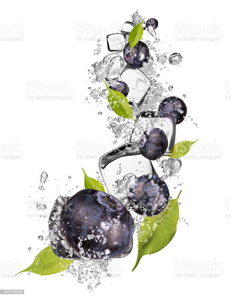 Ice blueberries on white background stock photo