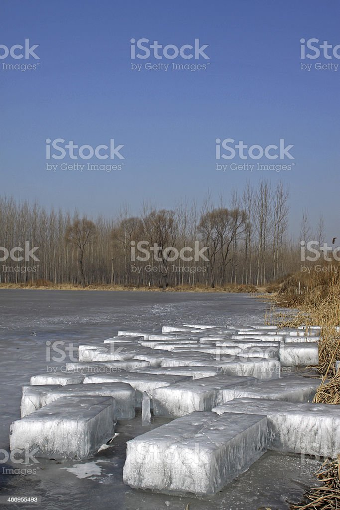 ice by the river royalty-free stock photo