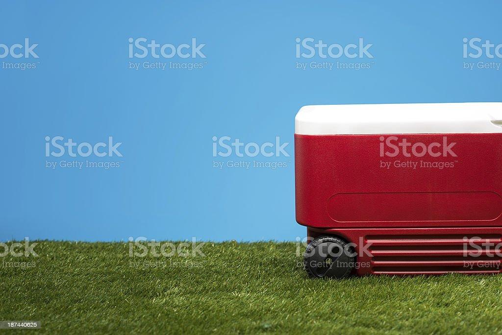 Eis Brust auf Gras – Foto