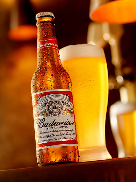 Best Budweiser Stock Photos, Pictures & Royalty-Free Images - iStock