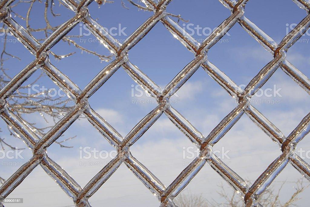 Ice überdachte Maschendrahtzaun Lizenzfreies stock-foto
