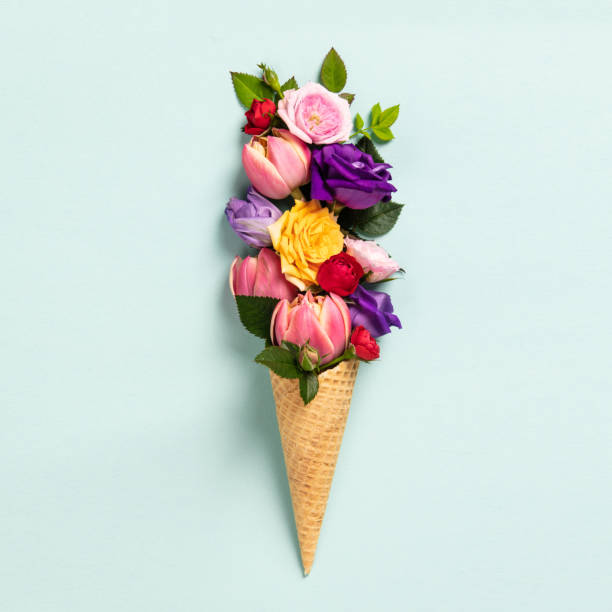 Ice cream cone with flowers and leaves. Summer minimal concept. stock photo