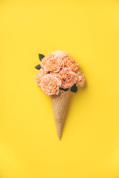Ice cream cone with pink roses on yellow background stock photo