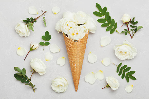 Ice cream of rose flowers in waffle cone flat lay picture id538194672?b=1&k=6&m=538194672&s=612x612&w=0&h=vqebdm2r91 ybkt5kdnkjvtl5jvquh8gj19myiws7eg=