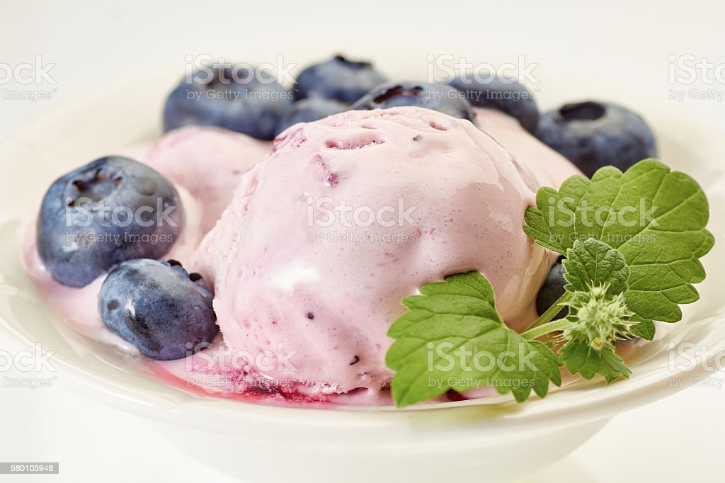 Ice cream with blueberries and branch of mint stock photo