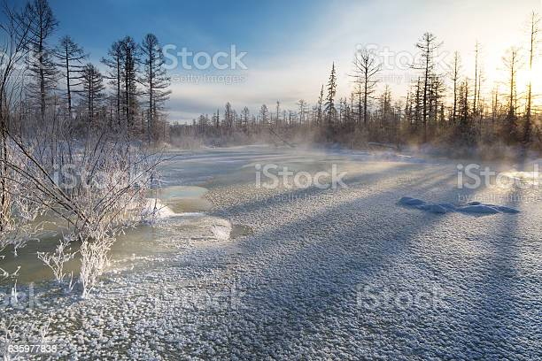 Photo of ice crust on the creek