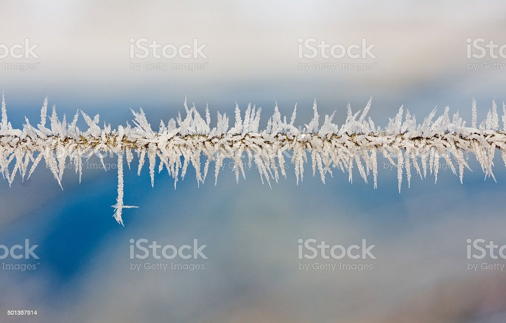 Ice crystals on a wire stock photo