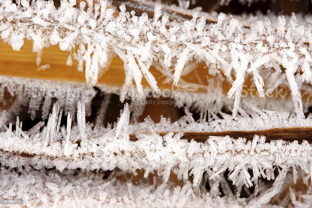 Ice crystals royalty-free stock photo