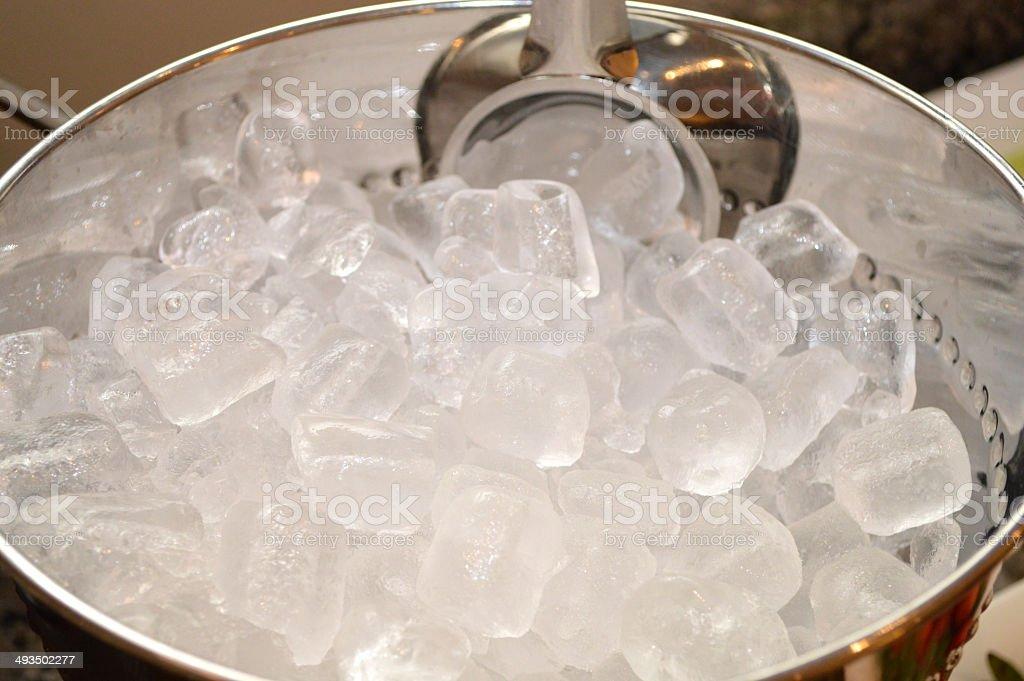 Ice Cube Bucket stock photo