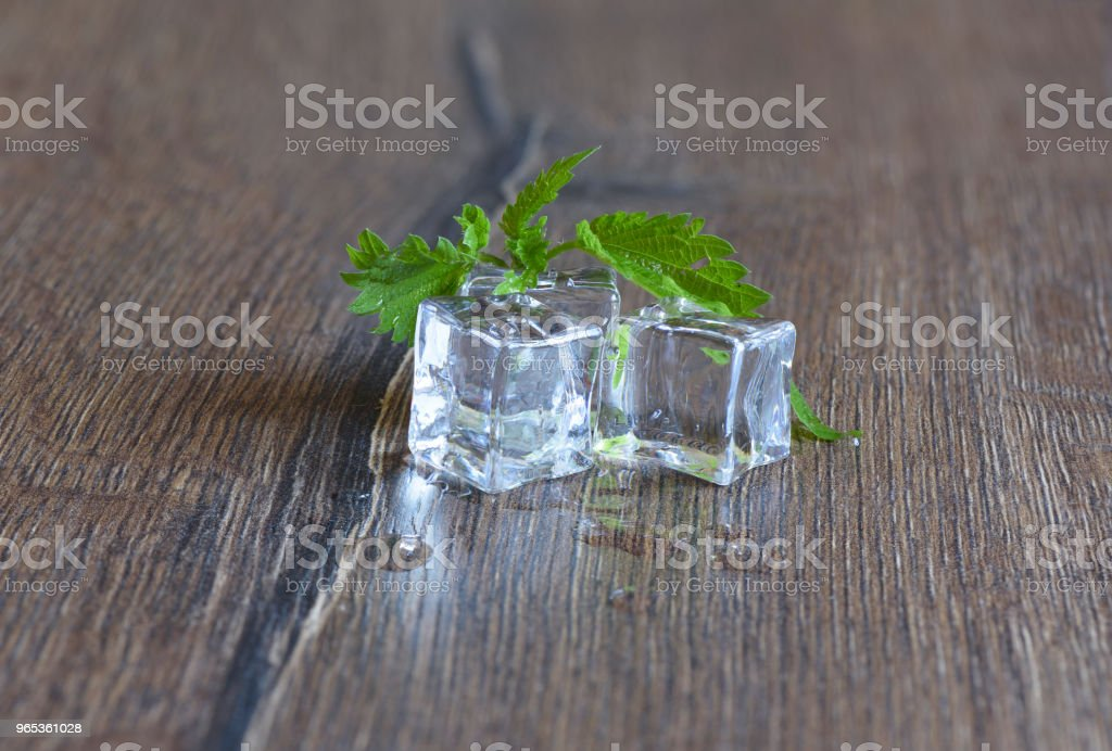 Ice cubes and nettle leaves on wooden background royalty-free stock photo