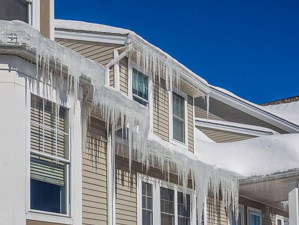 ice dams and snow on roof and gutters - ijs stockfoto's en -beelden