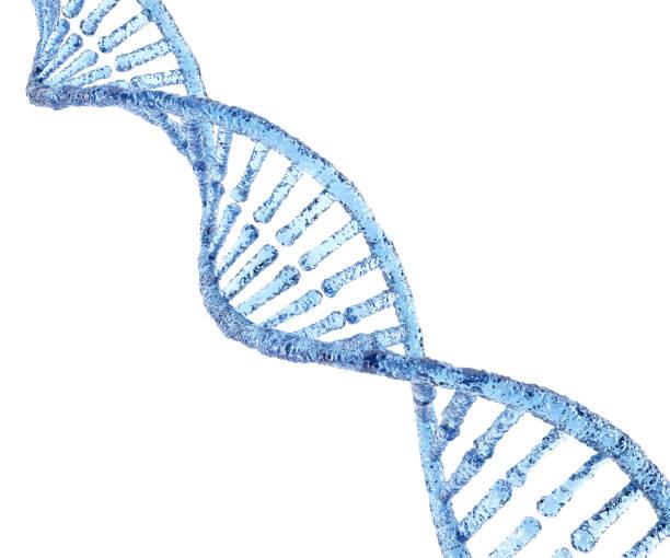 Ice DNA stock photo