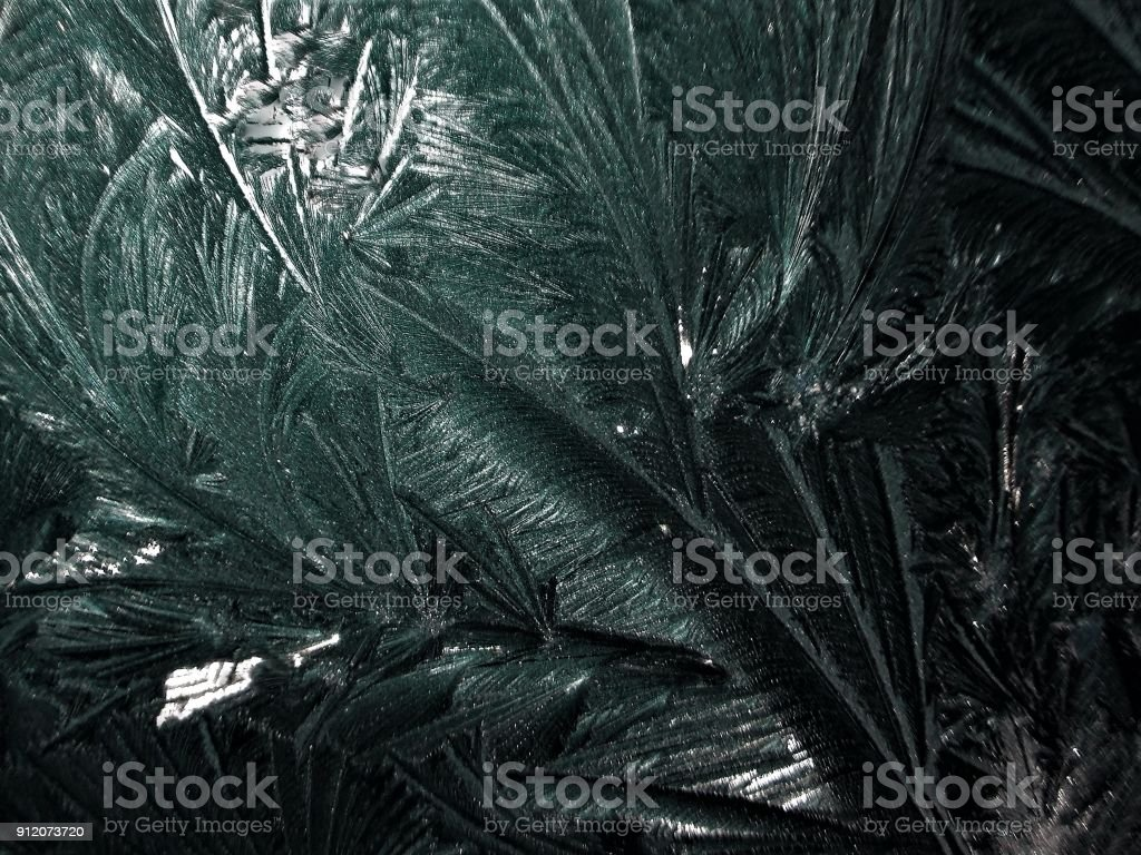 Ice Feathers Painted by Almighty God on a Bitterly Cold Winter's Day stock photo