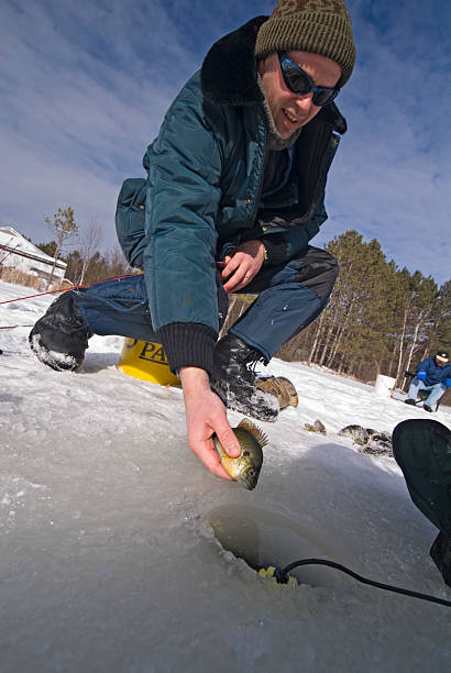 Ice Fisherman Releases Fish stock photo