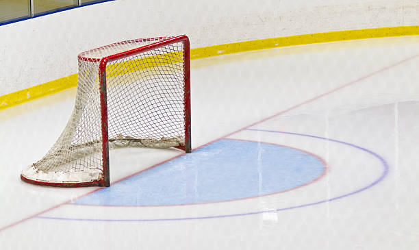 Ice hockey goal and crease in an arena stock photo