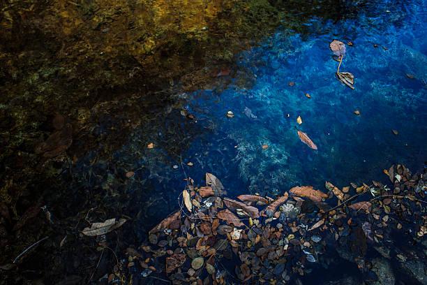 - See lake – Foto