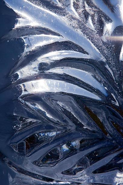 Ice leaf stock photo