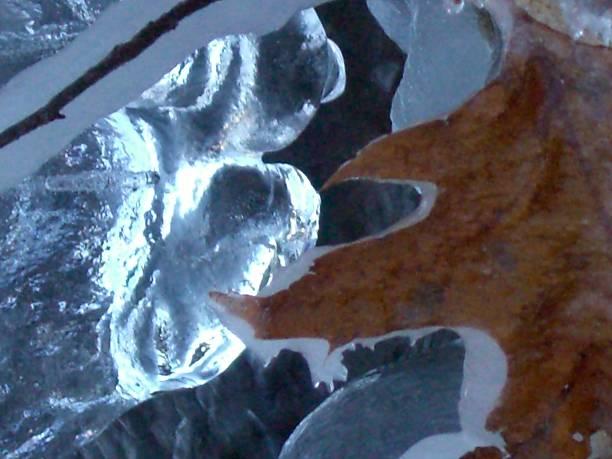 Ice, Light, Leaf stock photo