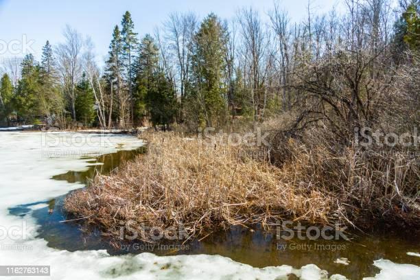 Photo of Ice Melting on Lake in Quebec